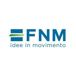 Gruppo FNM S.p.a.